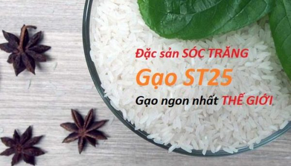 St25 gạo