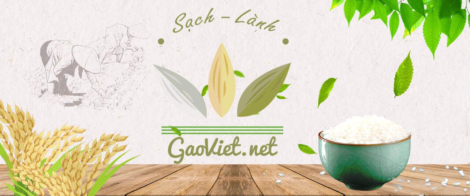 Banner Gạo Việt 2
