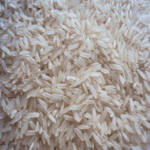 Hạt gạo khang dân