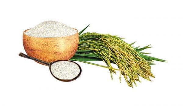 Gạo khang dân