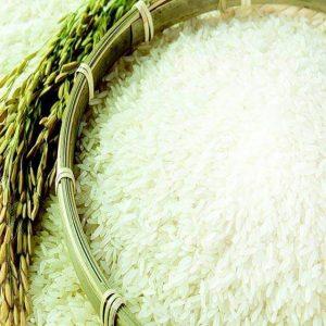 Hạt gạo ST21